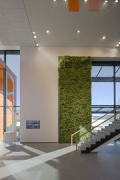 "Schlüter-Systems Workbox: ""suspended garden"" inside entrance-lobby"