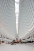 WTC Oculus: main hall, axial, portrait picture